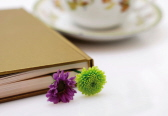 book flower teacup 72dpi