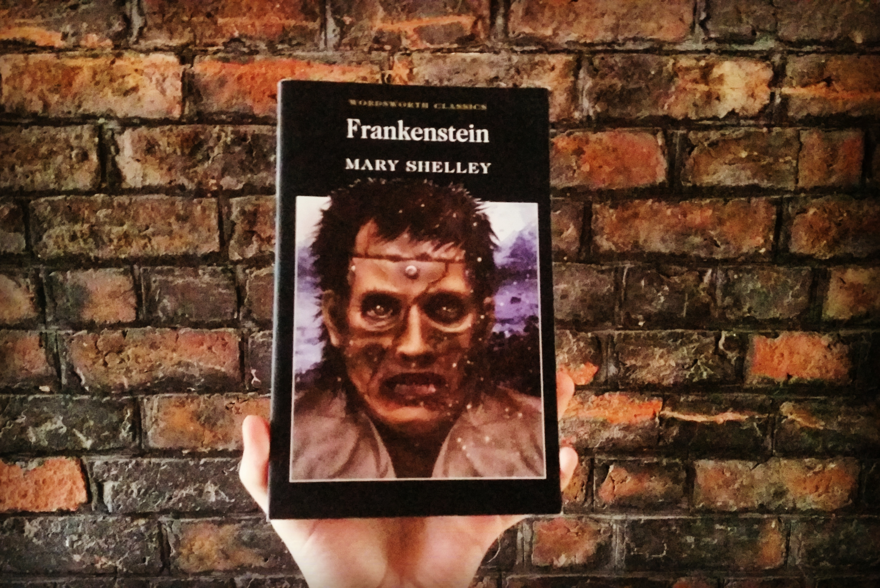 in the novel frankenstein by mary So how did this influence a young mary shelly and lead her to compose one of the most widely read novels of all time, frankenstein or, the modern prometheus.